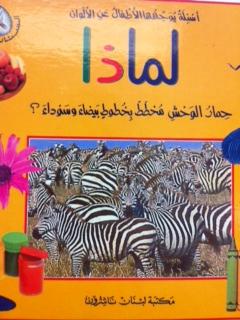 Why Zebra scheme with black and white stripes