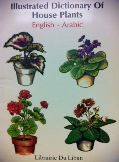 IllustratedJuniorDictionaryEnglishArabicArabicEdition