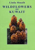 Wildflowers of Kuwait